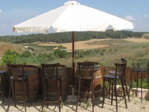 View from the Patio at the Kadma Winery (photo credit    - Kadma Winery)