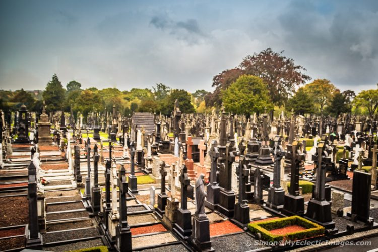 Ireland's History in Stone at Glasnevin Cemetery Museum:
